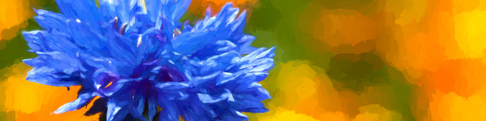 Kornblume als Gemälde