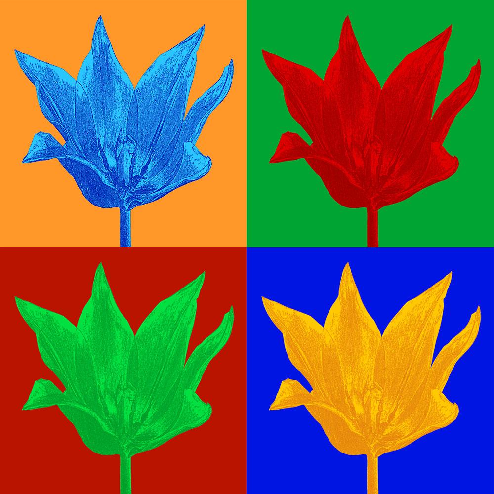 Tupengrafik im Stil von Andy Warhol